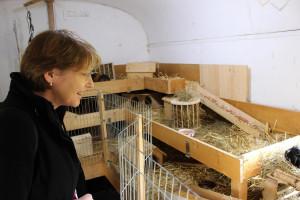 MdB Ulrike Bahr in einem alten Bauwagen, in dem in den Wintermonaten Meerschweinchen wohnen.